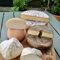 L'Auvergne est dans la place ! 🤗 🧡Saint-Nectaire fermier 💛Saint-Chabret, tomme de chèvre fermière 🤍Buronoix à la liqueur de noix (vache). 🤎Maringuois, gaperon fermier à l'ail & poivre.  ☎️04 84 51 07 34 💻shop.maisonmoga.fr