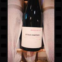 ⚠️ Pépite ! : Champagne Roger Coulon; Le Mont Moine, Coteaux Champenois Rouge, Premier Cru, vendanges entières. 100% Meunier. Coulommes-la-Montagne. DISPO à la Maison Moga ! 🤗🧡  ☎️04 84 51 07 34 💻shop.maisonmoga.fr