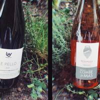 ⚠️SAMEDI 1ER MAI (oui on est ouvert ! 😉)➡️PRÉSENTATION de vins AOC VENTOUX & IGP CÉVENNES: 🤓Le Pello, Domaine Le Breton Vial, IGP Cévennes; un vin rouge qui sent bon le soleil d'Uzès ! Assemblage de cabernet et syrah. Fruité, croquant et aux arômes de fruits rouges. Bio. Parfait avec un plat mijoté. 🤓Roumille, Domaine La Combe au Mas, AOP Ventoux; un vin rosé élevé en amphore, assemblage grenache et syrah, arômes de fraises écrasées et framboises. Un rosé à la fois gourmand et structuré !  ☎️04 84 51 07 34 💻shop.maisonmoga.fr